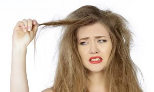 brazilian hair east windsor nj